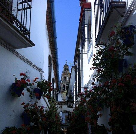 Calleja de las Flores: View towards Torre de Alminar