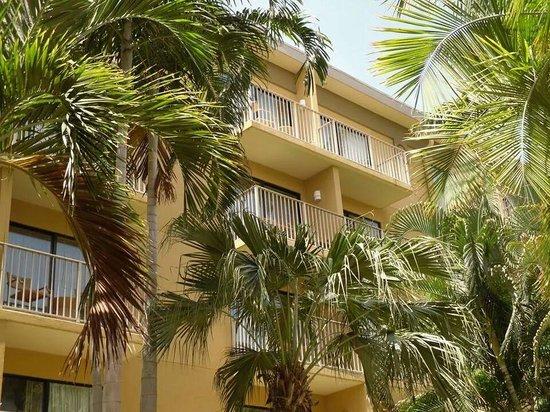 Grand Cayman Marriott Beach Resort : Marriott Grand Cayman...courtyard view.