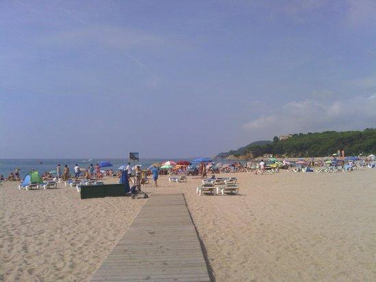 Gran Hotel Don Juan : Playa de fenals