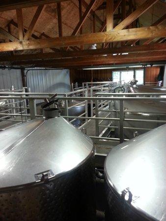 Pellegrini Vineyards: distillation