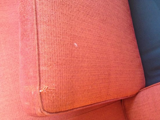 Residence Inn by Marriott Philadelphia Center City: Stained worn sofa. Was worse in our first room