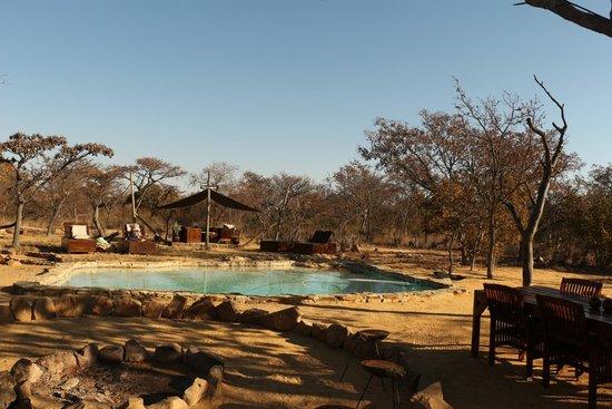 Ama Amanzi Bush Lodge: zwembad en lounge area