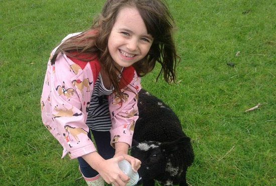 Broadgate Farm Cottages: Join us for lambing