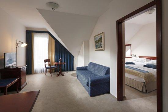 Kompas Hotel Bled: Suite