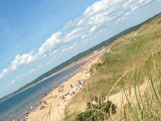 Tylosand Strand: Tylösand beach