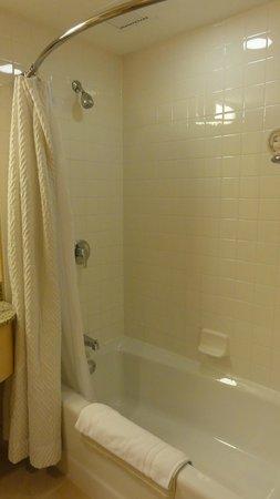 Orchard Garden Hotel : shower/bath