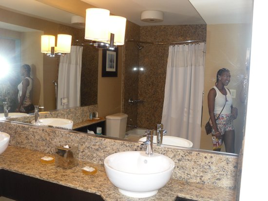 Crowne Plaza Chicago O'Hare Hotel & Conference Center : Big Bathroom