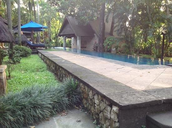 Hotel Novotel Bogor Golf Resort and Convention Center: het zwembad