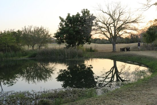 Sabi River Sun Resort: View of the grounds / golf course