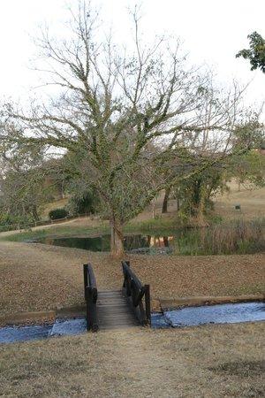 Sabi River Sun Resort: View of the grounds