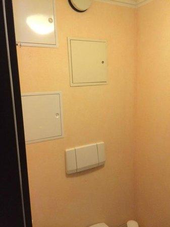 Steigenberger Hotel Sanssouci: Wand über der Toilette