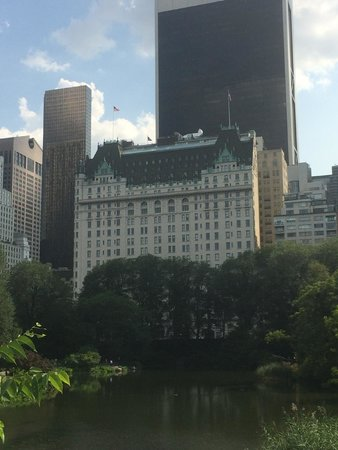 The Plaza: View from Central Park