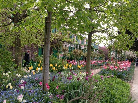 Maison et jardins de Claude Monet : 5月上旬の庭