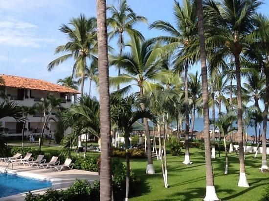 Crown Paradise Club Puerto Vallarta : area verde