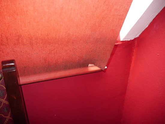 Edinburgh Backpackers Hostel : THE CURTAIN