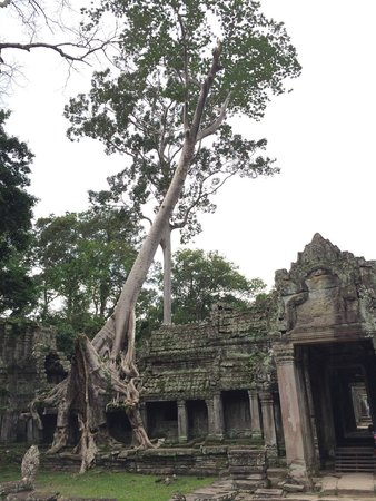 Best Angkor Guide - Day Tours: Beautiful Temples