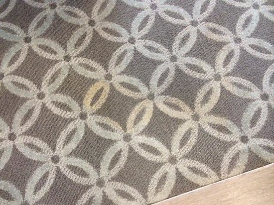 Hampton Inn & Suites Columbia/Southeast-Ft. Jackson: Brown stain to room carpet