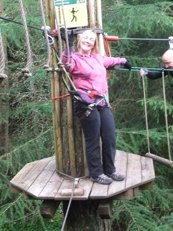 Go Ape Whinlatter: hang in there!