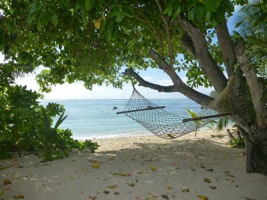 Villa Dorado : Strand vor dem Haus