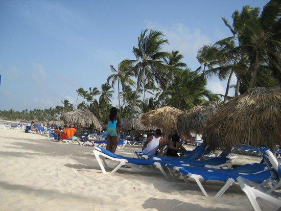 Tropical Princess Beach Resort & Spa: Plage et transat de l'hôtel