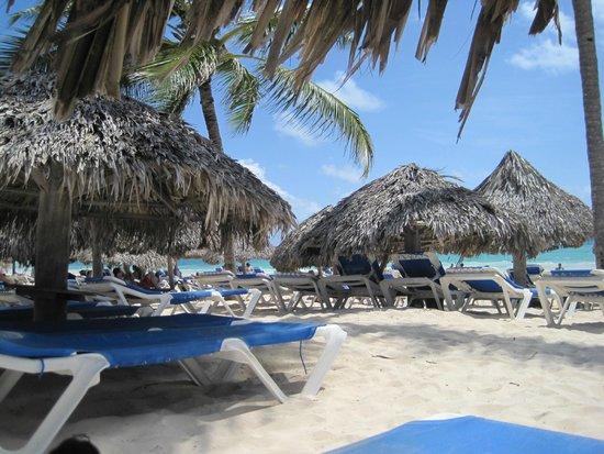 Tropical Princess Beach Resort & Spa: Vue de la plage