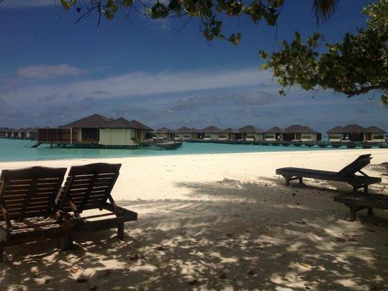 Paradise Island Resort & Spa: Strand