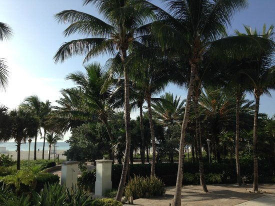 The Ritz-Carlton, South Beach: Walkway from the hotel to the beach