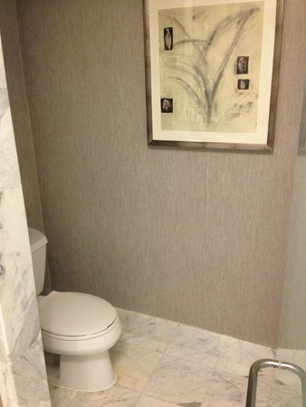 The Ritz-Carlton, South Beach: Toilet