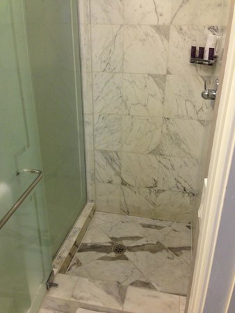 The Ritz-Carlton, South Beach: Shower