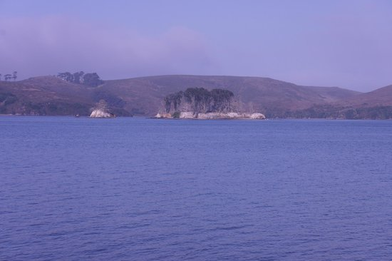 Nick's Cove Cottages: View across the bay from Ruthie's