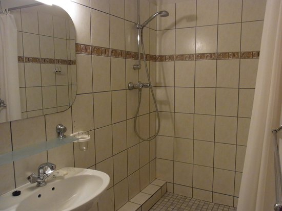 Hotel Europa Hof : バスルーム