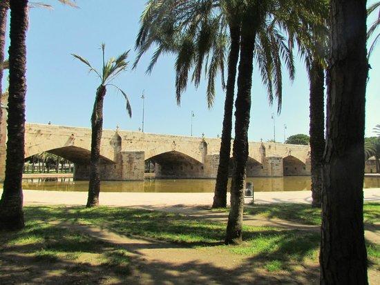 Antiguo Cauce del Rio Turia: a