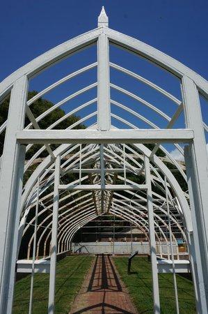 Lyndhurst: Conservatory