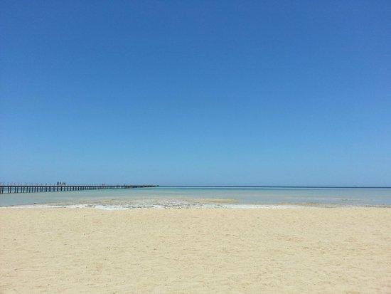 Magic Tulip Beach Resort : LA SPIAGGIA