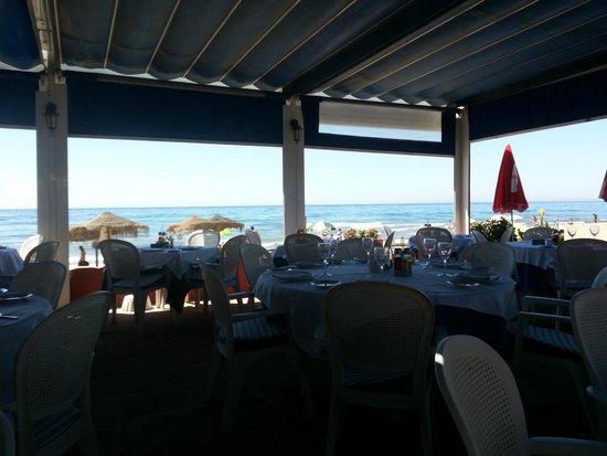Restaurante Los Sardinales : View on the terrace