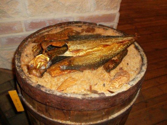 Estran Cité de la Mer : Рыба