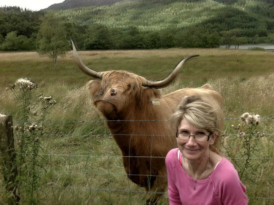 The Hairy Coo - Free Scottish Highlands Tour : Me & my new BFF - Fiona