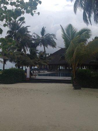Meeru Island Resort & Spa : Main pool -Meeru