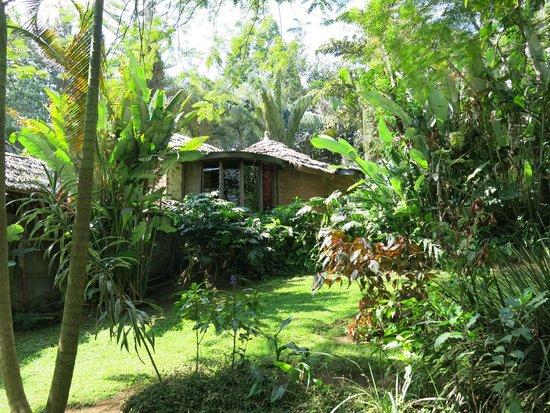 Moyoni Lodge : Notre 1° nuit dans une petite case