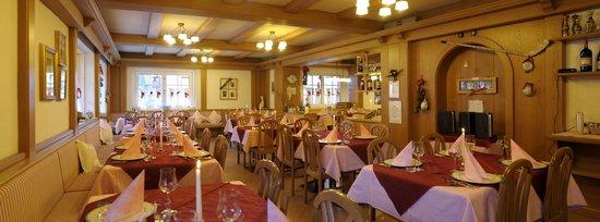 Alpstyle Hotel Albolina: sala