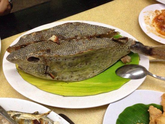 RM Seafood New Losari: Kudu kudu fish / ikan kotak