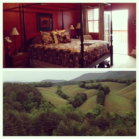 Berry Springs Lodge: Gorgeous view from our balcony and a picture of the poster bed in the room