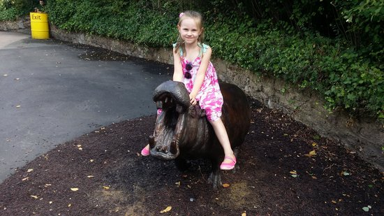 ZSL London Zoo: and this is our monkey on a hippo :)