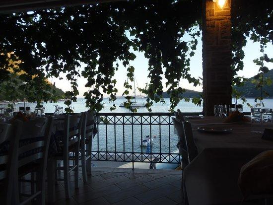 Oceanis Rooms: ristorante sul molo...specialità pesce!