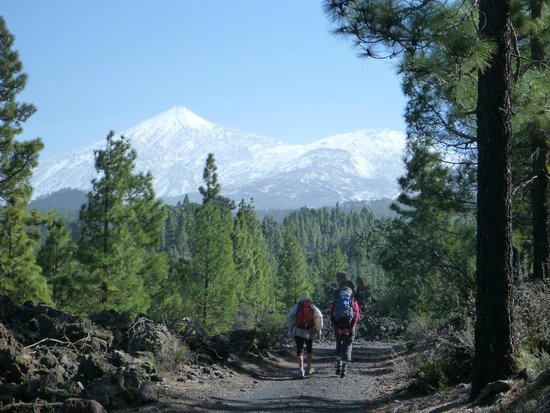 Trekking Tenerife -  Tours