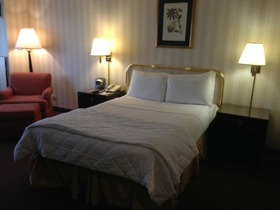 LaGuardia Plaza Hotel - New York : sunken bed