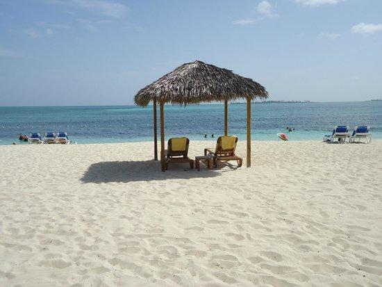 Breezes Resort & Spa Bahamas : Hired Cabana for $20