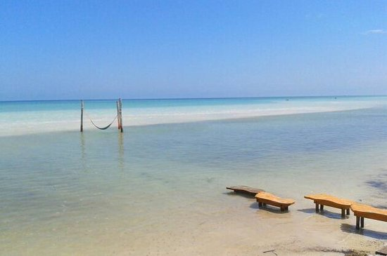 Villas Flamingos: Paradise hammock on the beach