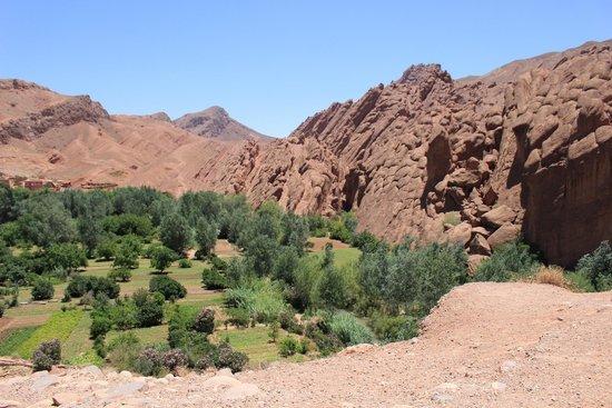 Desert Dream 4x4 Tours: Dades Gorge