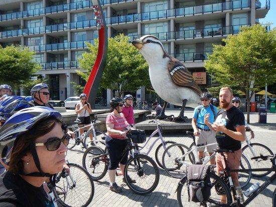Cycle City Tours and Bike Rentals: Olympic Athletes village